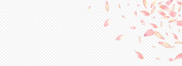 Flor rosa em transparente. folha caindo. textura sakura.