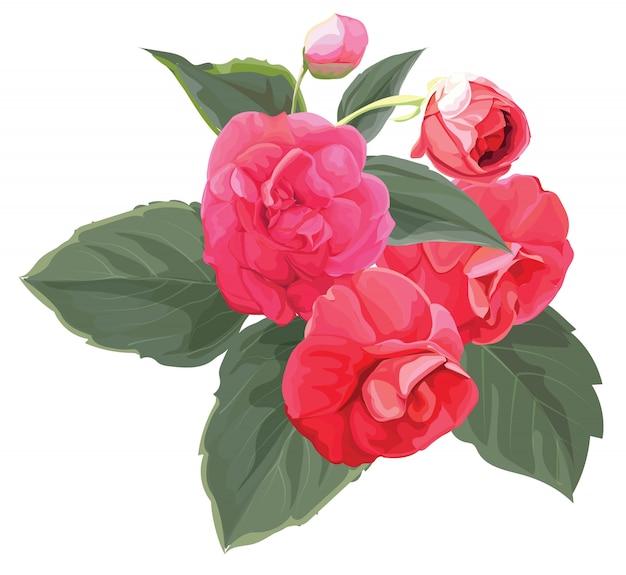 Flor rosa multiflora