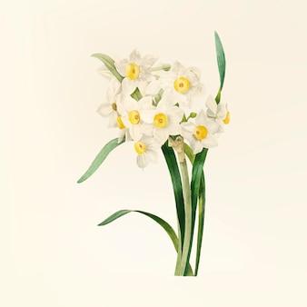 Flor vintage ilustração