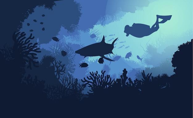 Flora e fauna subaquática marinha