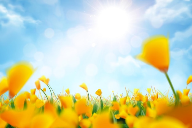 Flores amarelas de bokeh e fundo de céu azul na ilustração 3d