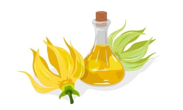 Flores amarelas de cananda odorata ou ylang ylang estão perto de um frasco de vidro com rolha e óleo essencial com fragrância dourada.