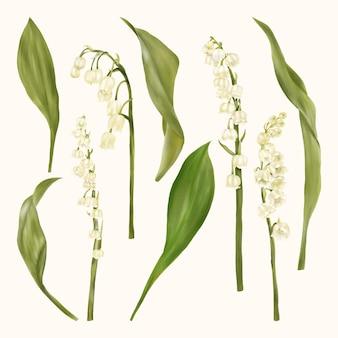Flores brancas de lily of the valley