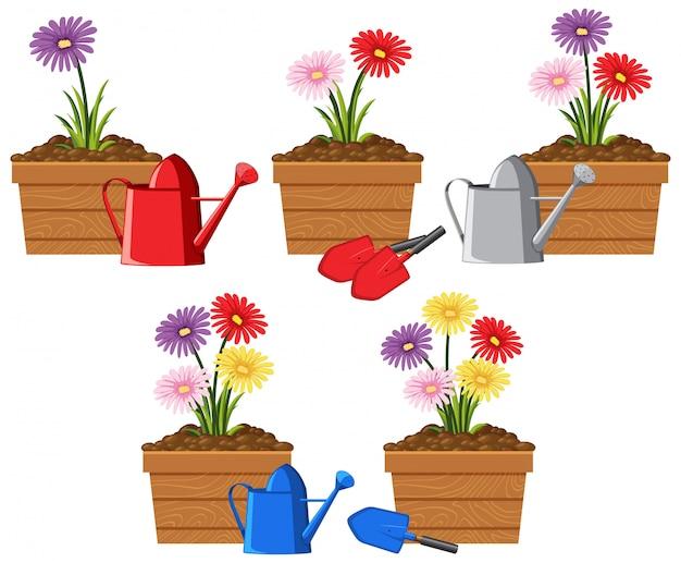 Flores coloridas em recipientes de madeira