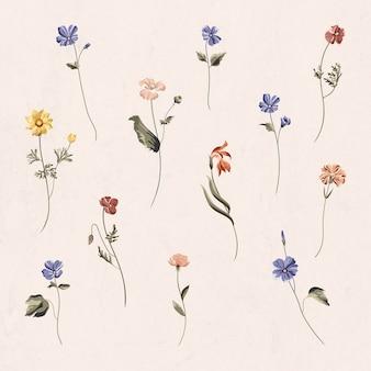 Flores coloridas em um vetor de fundo bege