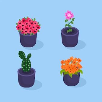 Flores coloridas na coleção de maconha