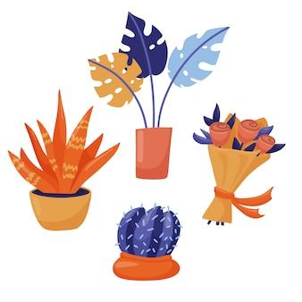 Flores como presentes - bouquet de rosa, houseplant monstera, cactos em vasos e estilo plano bonito, suculento