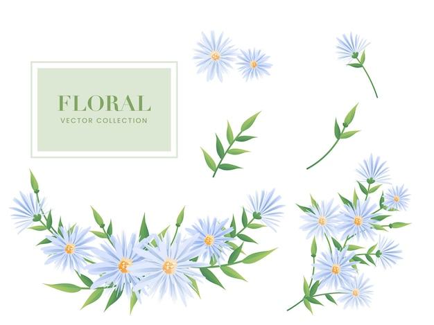 Flores da margarida com coleção de folhas verdes em fundo branco.