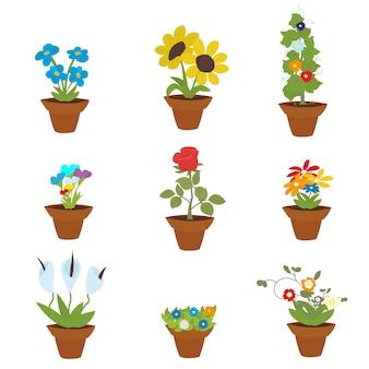 Flores da primavera em vasos