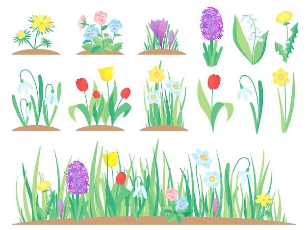 Flores da primavera, flor de tulipa de jardim, início de plantas florais e conjunto de jardinagem isolado de tulipas