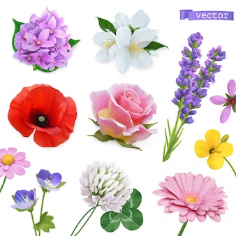 Flores da primavera. lilás, jasmim, oppy, rosa, lavanda, trevo, camomila. conjunto de ícones realista 3d