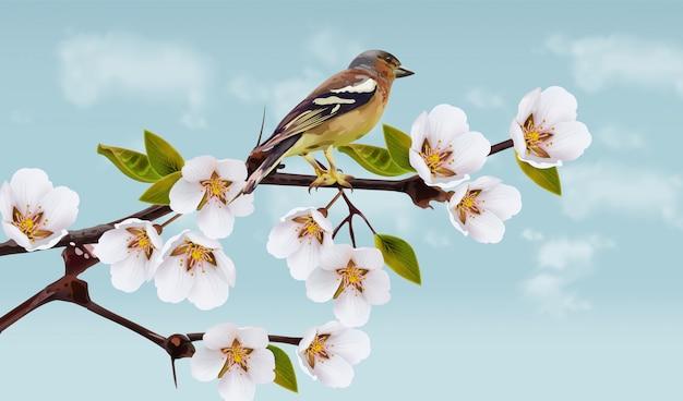 Flores de cerejeira e ilustração de pássaro