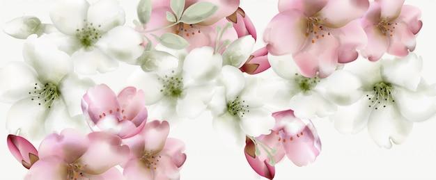 Flores de cerejeira em aquarela de fundo