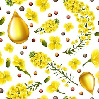 Flores de estupro padrão, canola. brassica napus.