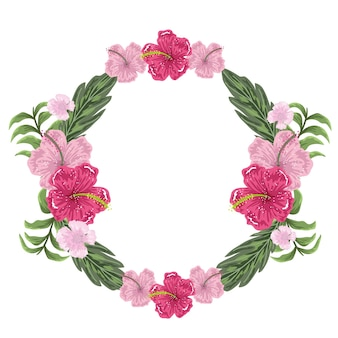 Flores de hibisco exoitc decoração moldura redonda, ilustração pintura
