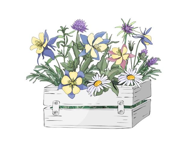 Flores de jardim de vetor em uma caixa branca de madeira de jardim