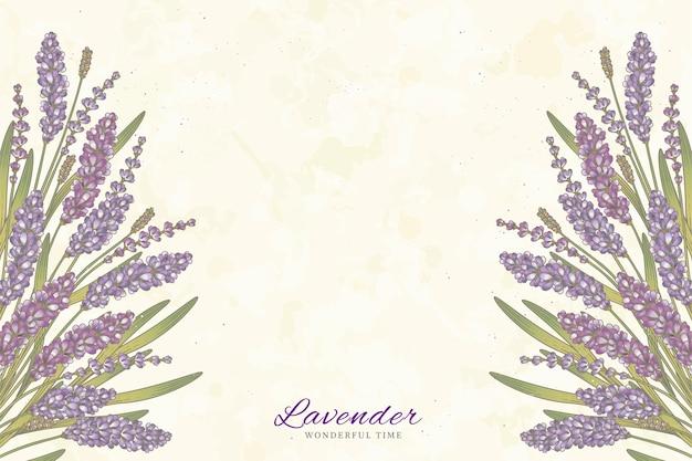 Flores de lavanda gravadas em fundo bege com espaço de cópia