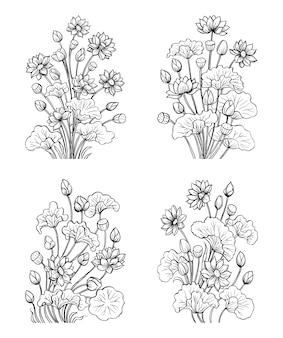 Flores de lótus, ilustração desenhada à mão