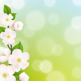 Flores de macieira em tons pastéis