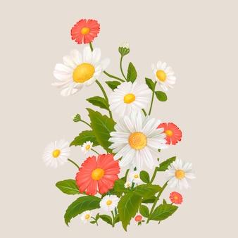Flores de margarida mistas