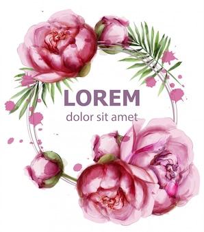 Flores de peônia coroa delicada