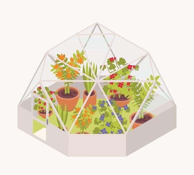 Flores desabrochando e vasos de plantas crescendo dentro de uma estufa com cúpula de vidro