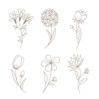 Flores desenhadas à mão com coleção de folhas