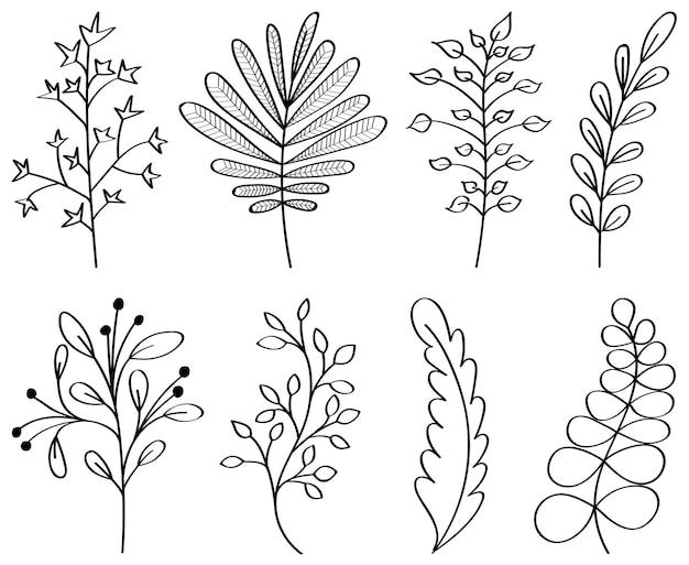 Flores desenhadas à mão, folhas, ramos. contornos de elementos florais. ilustração botânica. adequado para web, histórias, convites de casamento, cartões postais, citações, blogs, quadros.