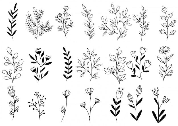Flores desenhadas mão