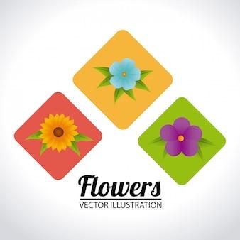 Flores, desenho, ilustração