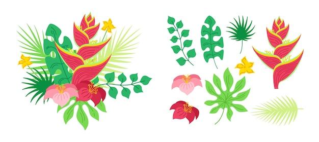 Flores do buquê tropical de helicônia. havaiano. selva exótica desenhada de mão. ilustração