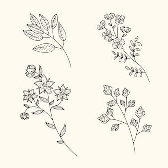 Flores e ervas botânicas vintage