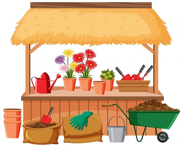 Flores e ferramentas de jardinagem em fundo branco
