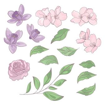 Flores e folhas coleção floral