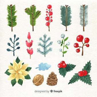 Flores e folhas de natal