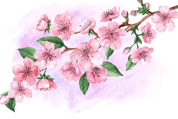 Flores e folhas em aquarela de sakura