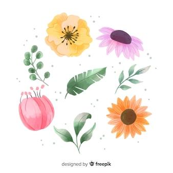 Flores e folhas em aquarela