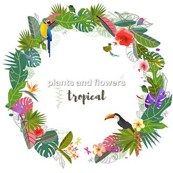 Flores e folhas tropicais folha de monstro exótico cores caribenhas estilo tropical