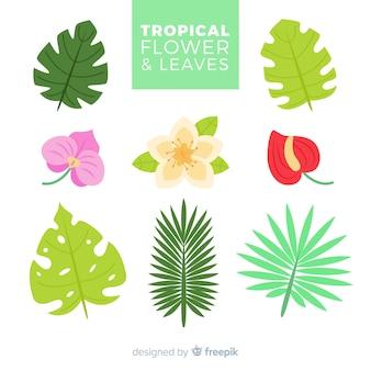 Flores e folhas tropicais planas