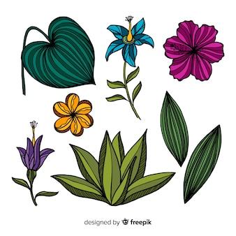 Flores e folhas tropicais