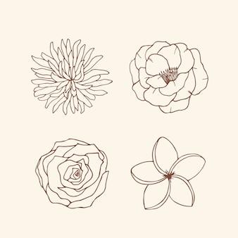 Flores elegantes desenhadas à mão