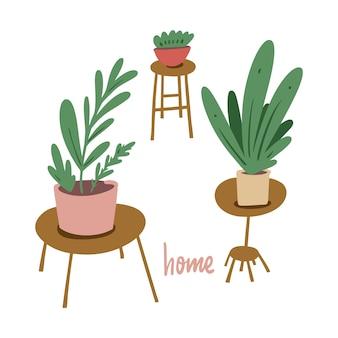 Flores em vasos. decoração do quarto verde. ilustração. isolado no fundo branco.