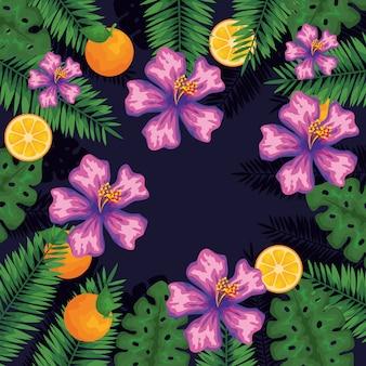 Flores exóticas com frutas e folhas de laranja