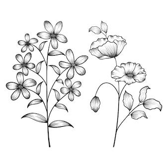 Flores silvestres botânicas florais desenhadas à mão, esboçadas a caneta e tinta