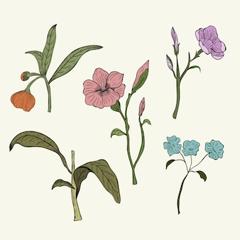 Flores silvestres coloridas em estilo vintage