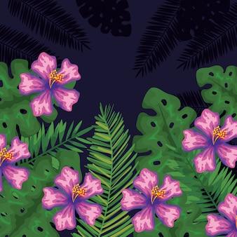 Flores tropicais com folhas