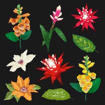 Flores tropicais e conjunto de folhas. coleção floral exótica. design botânico