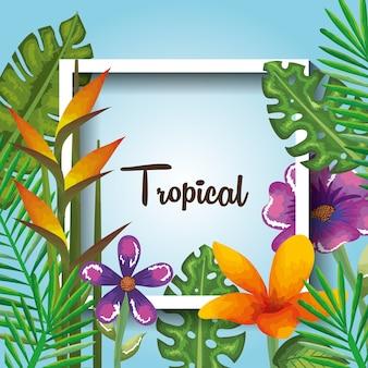 Flores tropicais e exóticas e folhas sobre o vetor de fundo da praia