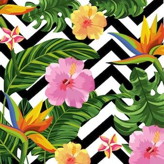 Flores tropicais e folhas com fundo de figuras