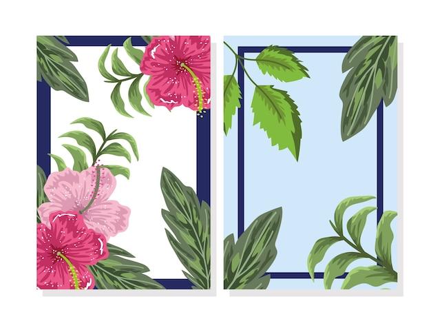 Floresce hibisco deixa estandartes botânicos da natureza